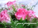 розики.jpg